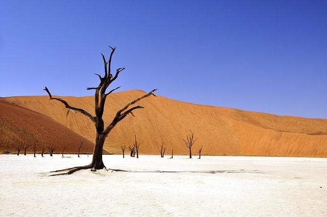 Reise Namibia Urlaub