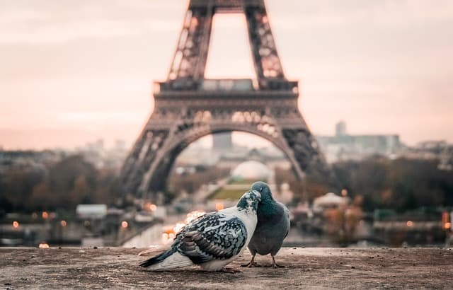 AirFrance-Paris
